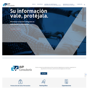 Website AVP Consultoría